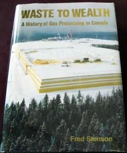 Waste To Wealth - Non-fiction